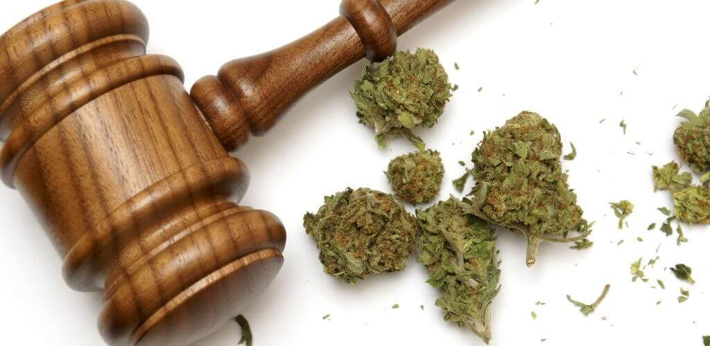 Court gavel next to marijuana.
