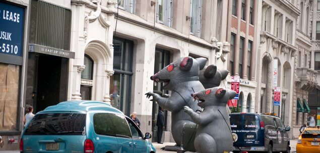 Rat parade display on street.